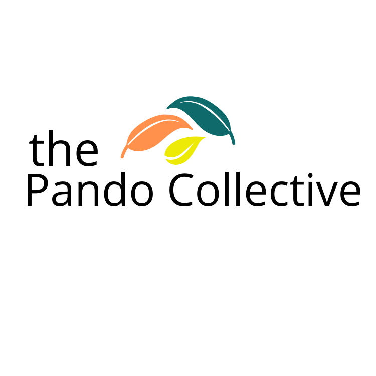Pando Collective